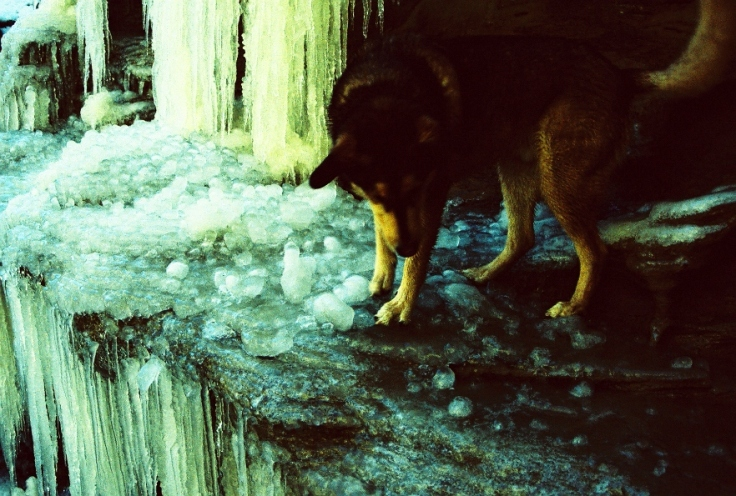 Reese explores ice falls in the Main Canyon interior.
